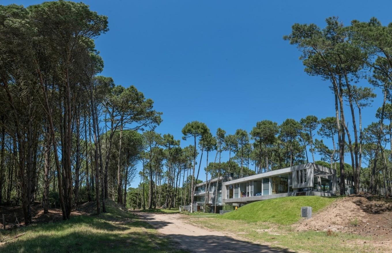 Лесной Аргентинский дом